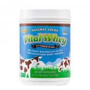 Well Wisdom - Vital Whey Choco - Grass-Fed Whey Protein  - 600 gram