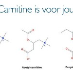 What form of carnitine is right for you?