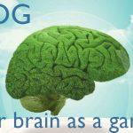 The brain, a garden