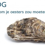 Why you should be eating oysters!