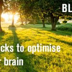 Optimizing your brain: 3 brain hacks