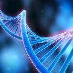 Nicotinamide riboside: A cellular superstar